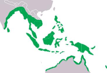 distribución y hábitat del cocodrilo de agua salada.